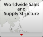 Worldwide Sales and Supply Structure